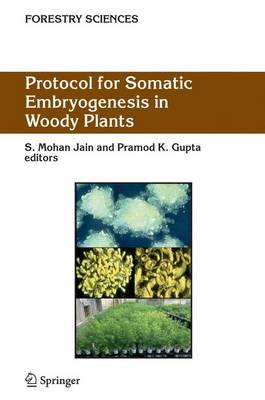 Protocol for Somatic Embryogenesis in Woody Plants - Forestry Sciences 77 (Hardback)
