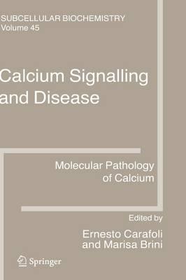 Calcium Signalling and Disease: Molecular pathology of calcium - Subcellular Biochemistry 45 (Hardback)