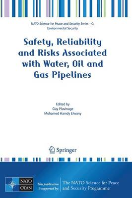 Safety, Reliability and Risks Associated with Water, Oil and Gas Pipelines - NATO Science for Peace and Security Series C: Environmental Security (Paperback)