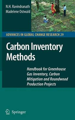 Carbon Inventory Methods: Handbook for Greenhouse Gas Inventory, Carbon Mitigation and Roundwood Production Projects - Advances in Global Change Research 29 (Hardback)