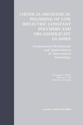 Chemical-Mechanical Polishing of Low Dielectric Constant Polymers and Organosilicate Glasses: Fundamental Mechanisms and Application to IC Interconnect Technology (Hardback)