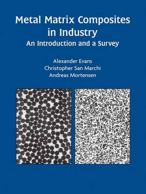 Metal Matrix Composites in Industry: An Introduction and a Survey (Hardback)