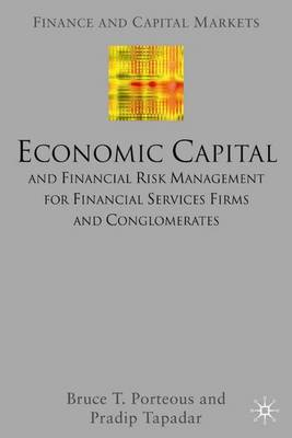 Economic Capital and Financial Risk Management for Financial Services Firms and Conglomerates - Finance and Capital Markets Series (Hardback)