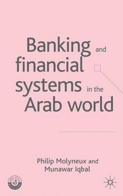 Banking and Financial Systems in the Arab World - Palgrave Macmillan Studies in Banking and Financial Institutions (Hardback)