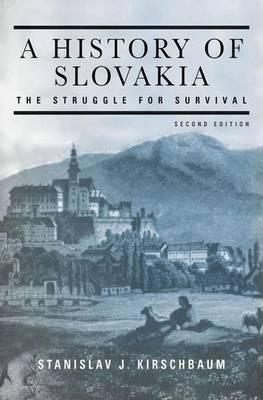 A History of Slovakia (Paperback)
