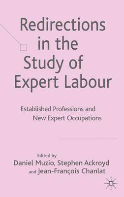Redirections in the Study of Expert Labour: Established Professions and New Expert Occupations (Hardback)