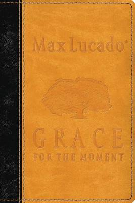 Grace for the Moment: Inspirational Thoughts for Each Day of the Year (Leather / fine binding)