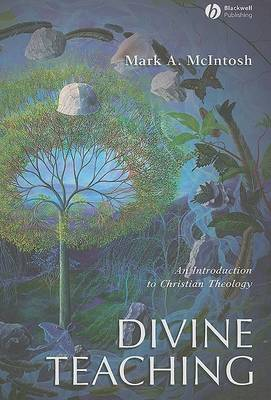 Divine Teaching: An Introduction to Christian Theology (Hardback)