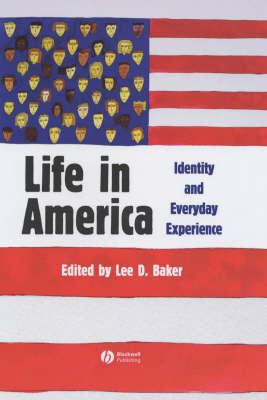 Life in America: Identity and Everyday Experience (Hardback)