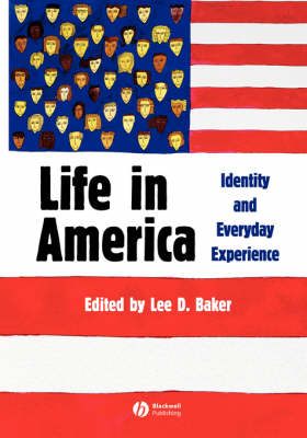 Life in America: Identity and Everyday Experience (Paperback)