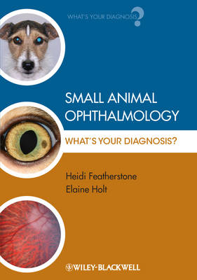 Small Animal Ophthalmology - What's Your Diagnosis? - What's Your Diagnosis? (Paperback)