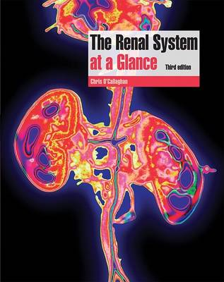 The Renal System at a Glance (Paperback)