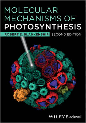 Molecular Mechanisms of Photosynthesis (Paperback)