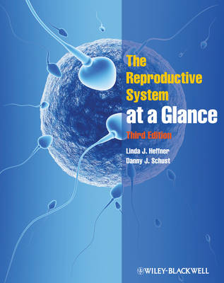 The Reproductive System at a Glance - At a Glance (Dentistry) (Paperback)
