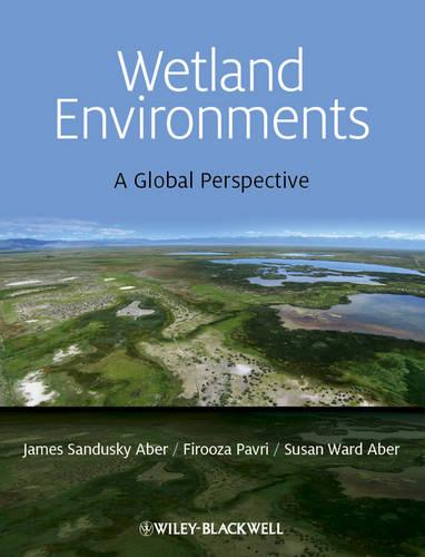Wetland Environments: A Global Perspective (Paperback)