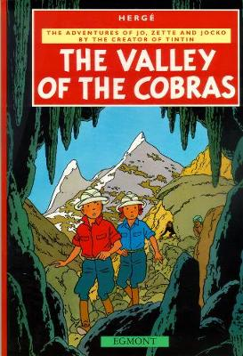 Valley of Cobras (Paperback)