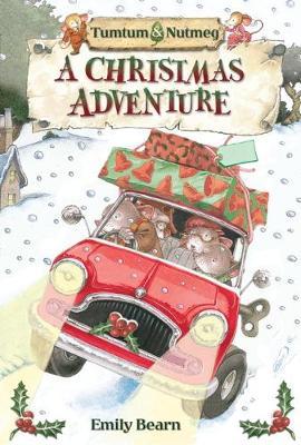 Tumtum & Nutmeg's Christmas Adventure - Tumtum and Nutmeg 4 (Paperback)