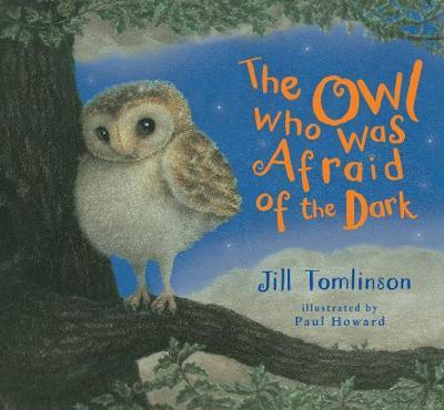 The Owl Who Was Afraid of the Dark by Jill Tomlinson, Paul Howard |  Waterstones