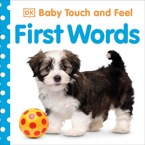 Baby Touch and Feel First Words - Baby Touch and Feel (Board book)