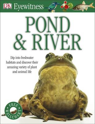 Pond & River - Eyewitness (Paperback)