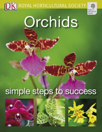 Orchids - RHS Simple Steps to Success (Paperback)