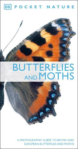 Butterflies and Moths: A Photographic Guide to British and European Butterflies and Moths - Pocket Nature (Paperback)