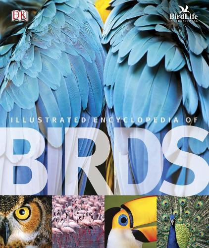 The Illustrated Encyclopedia of Birds (Hardback)