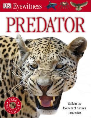 Predator - Eyewitness (Paperback)