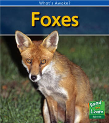 Foxes - Read and Learn: What's Awake? (Hardback)