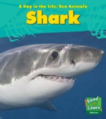 Sea Animals: Pack A - Young Explorer: A Day in the Life: Sea Animals (Hardback)