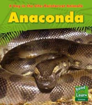 Anaconda - Young Explorer: A Day in the Life: Rainforest Animals (Paperback)
