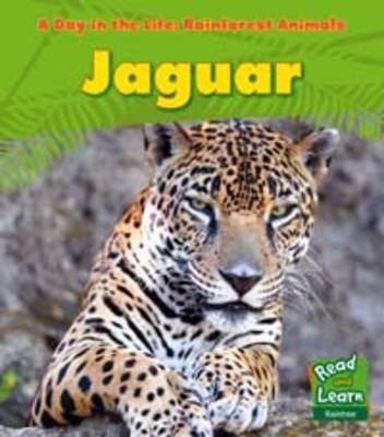 Rainforest Animals: Jaguar - Read and Learn: A Day in the Life: Rainforest Animals (Paperback)
