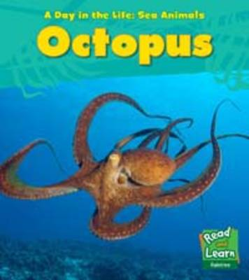 Octopus - Young Explorer: A Day in the Life: Sea Animals (Paperback)
