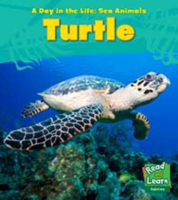 Sea Turtle - Young Explorer: A Day in the Life: Sea Animals (Paperback)
