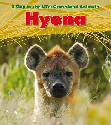 Hyena - Read and Learn: A Day in the Life: Grassland Animals (Hardback)