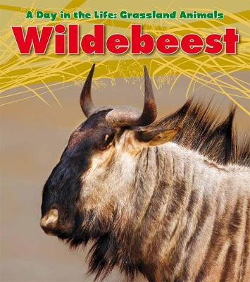 Wildebeest - Read and Learn: A Day in the Life: Grassland Animals (Paperback)