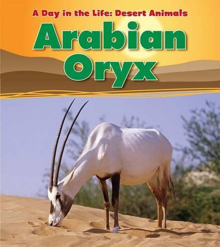 Arabian Oryx - Read and Learn: A Day in the Life: Desert Animals (Paperback)