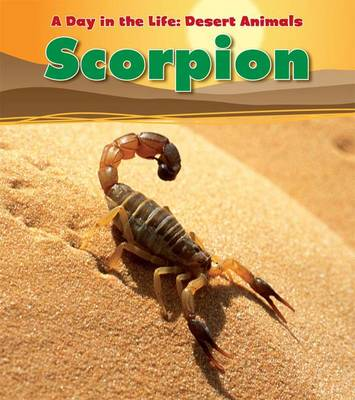 Scorpion - Read and Learn: A Day in the Life: Desert Animals (Paperback)