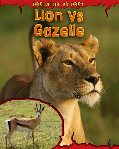 Lion vs Gazelle - Read Me!: Predator vs Prey (Paperback)
