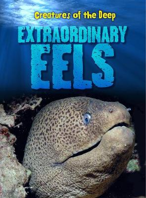Extraordinary Eels - Creatures of the Deep (Hardback)