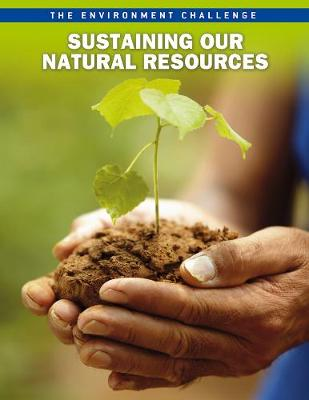 Sustaining Our Natural Resources - Raintree Freestyle: The Environment Challenge (Hardback)