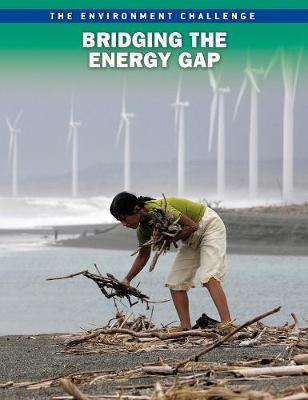 Bridging the Energy Gap - Raintree Freestyle: The Environment Challenge (Paperback)