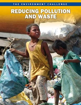 Reducing Pollution and Waste - Raintree Freestyle: The Environment Challenge (Paperback)
