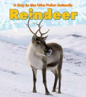 Reindeer - Read and Learn: A Day in the Life: Polar Animals (Paperback)