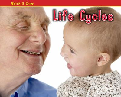 Life Cycles - Acorn Plus: (Hardback)