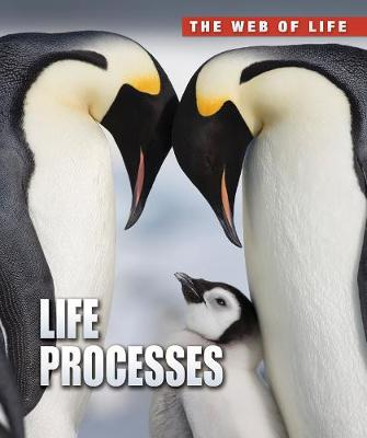 Life Processes - Raintree Freestyle: The Web of Life (Paperback)