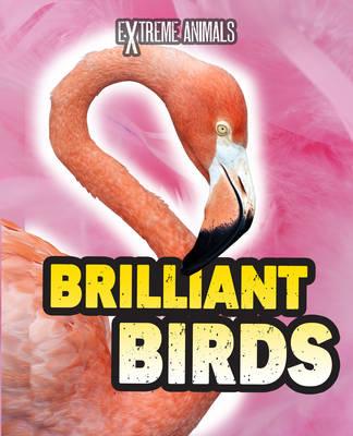 Brilliant Birds - Read Me!: Extreme Animals (Hardback)
