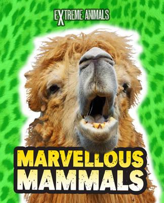 Marvellous Mammals - Read Me!: Extreme Animals (Hardback)