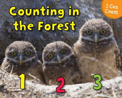 Counting in the Forest - Early Years: I Can Count! (Hardback)