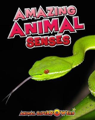 Amazing Animal Senses - Read Me!: Animal Superpowers (Hardback)